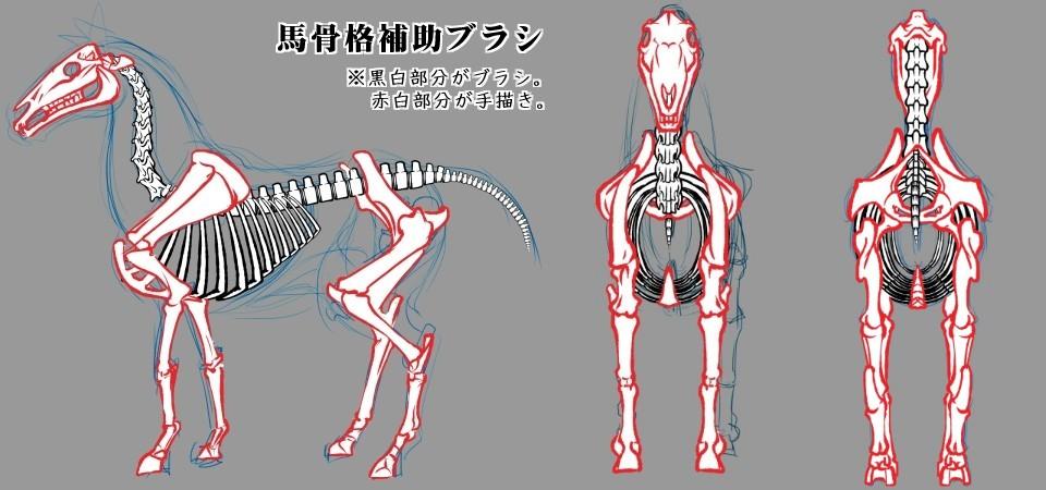 馬骨格描画補助ブラシ