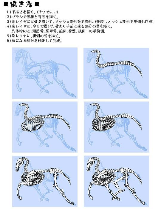 馬骨ブラシ使用・作画過程