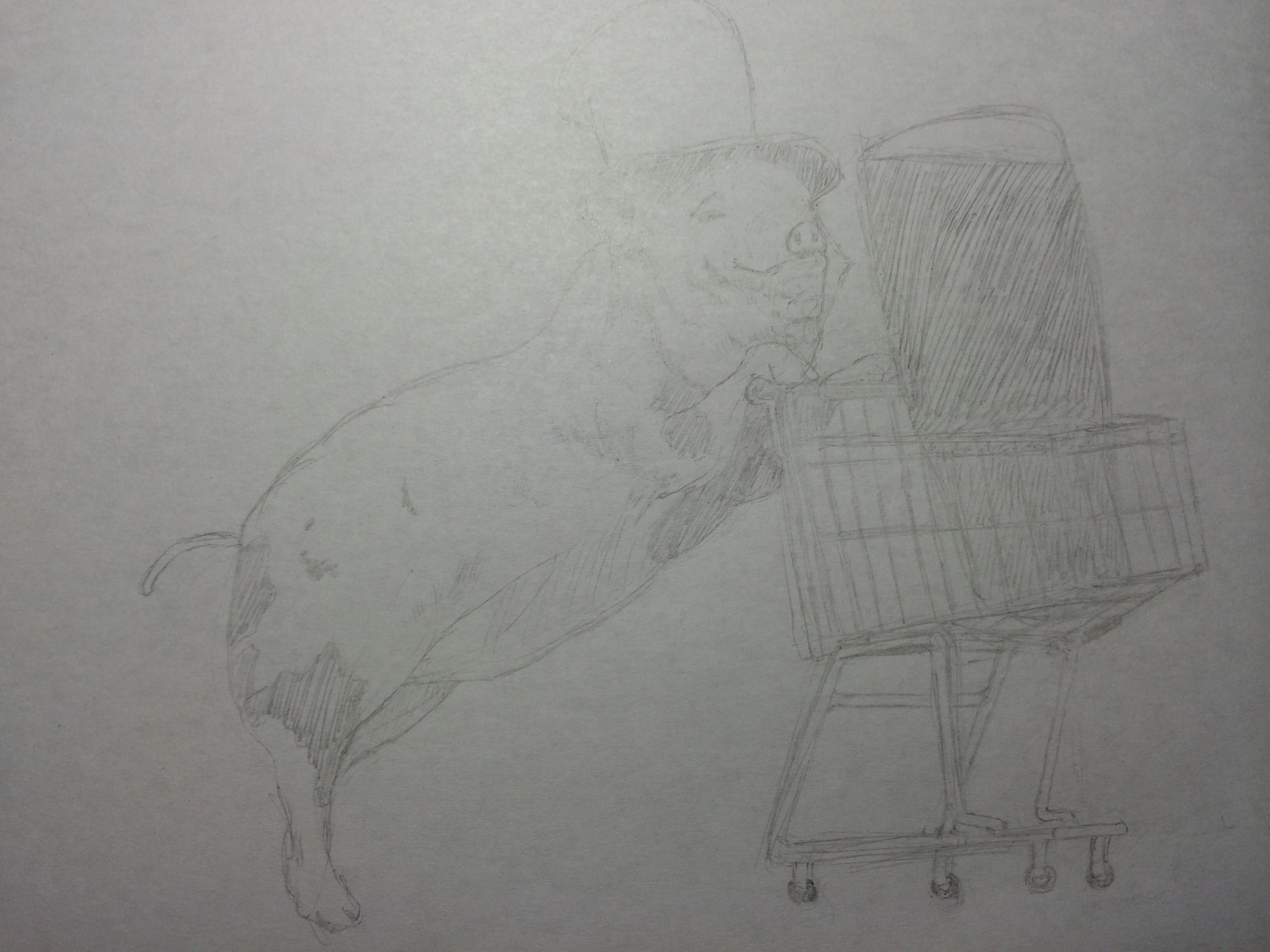 豚です…。