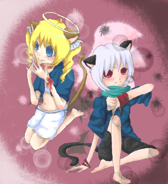 悪魔猫と天使猫。