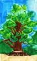 川棚の楠の木.1