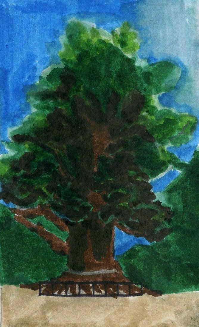 川棚の楠の木.2