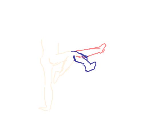 Ideal Hook Kick Trajectory