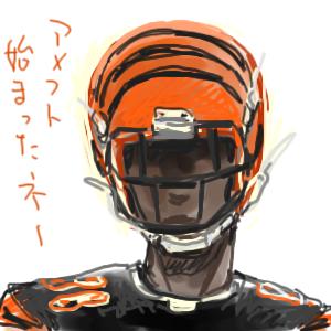 米の虎は橙色