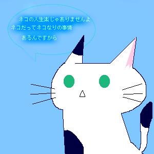 ネコのグチ