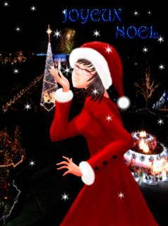 クリスマス@花回廊