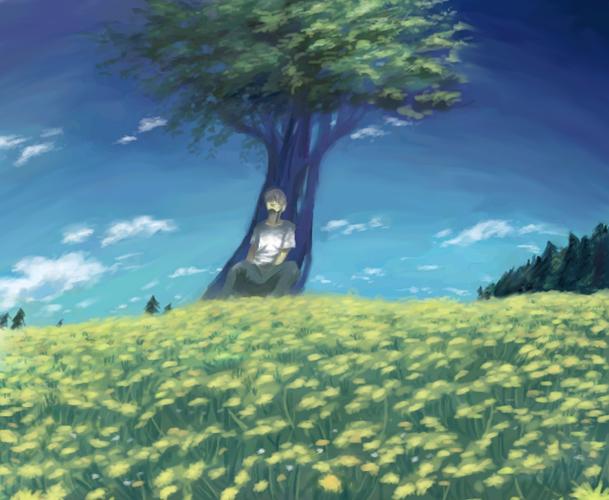 空と木の下