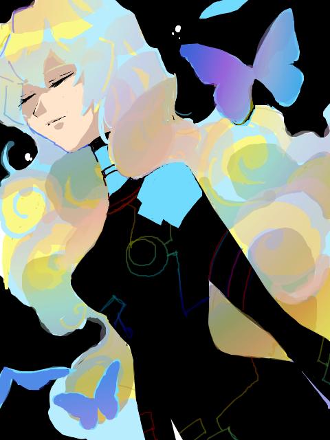 屠る花を探すように夜空を舞う蝶